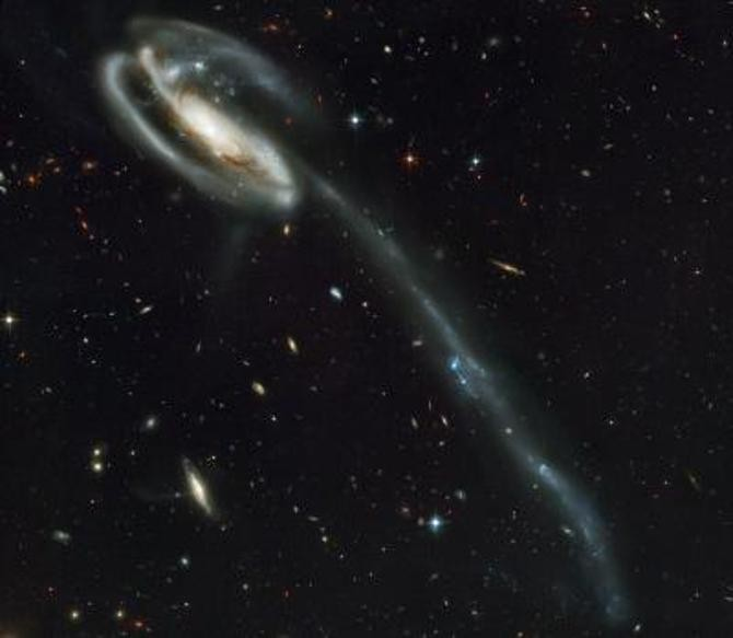 Neighbouring Dwarf Galaxies Refuse To Fit The Standard Model Of The Universe
