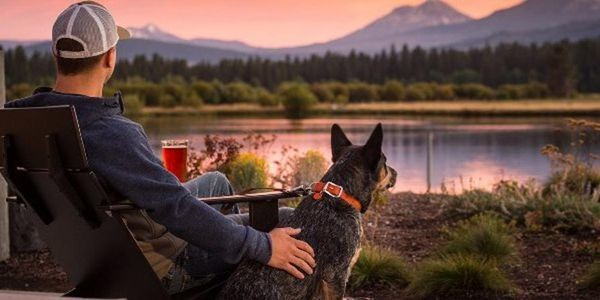 The Best Pet-Friendly Hotels In Lake Tahoe