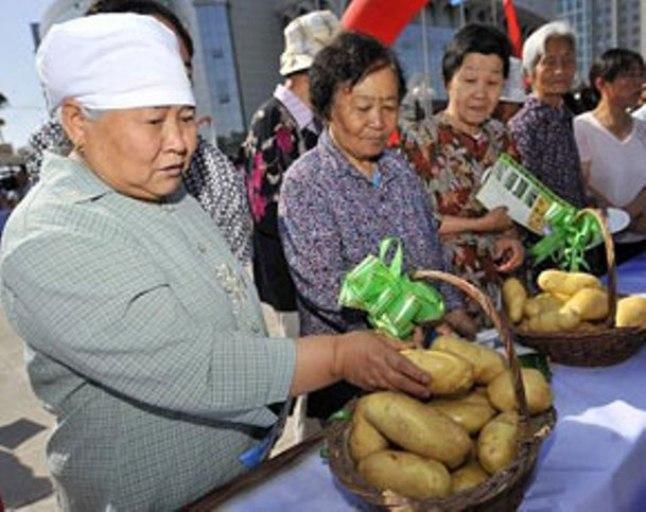 China's Future Green Gold: The Potato