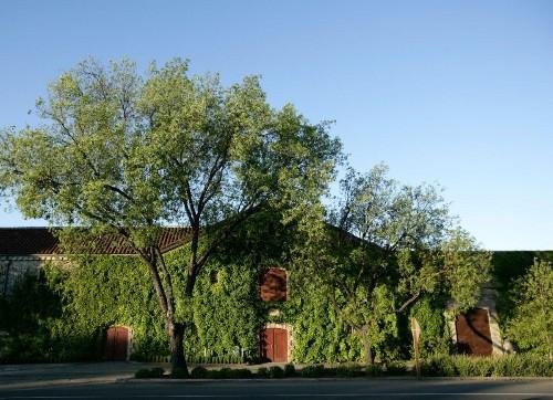 Georges de Latour Set The Bar‒And Still Does -- For California Cabernet Sauvignons