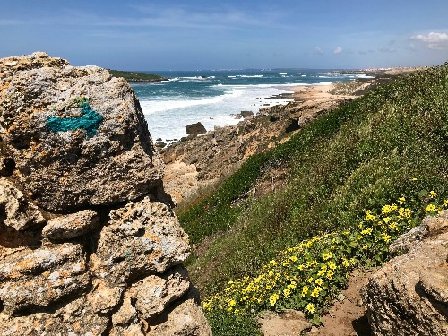 Beautiful Beaches at the End of the Earth: Exploring Portugal's Rota Vicentina