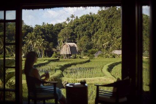 Hotels For Every Budget In Bali's Enchanting City Of Ubud