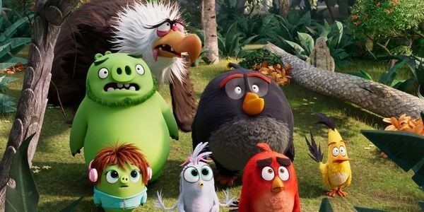Weekend Box Office: 'Angry Birds 2' Stumbles And '47 Meters Down 2' Recovers As Both 'Blinded' And Bernadette' Flop