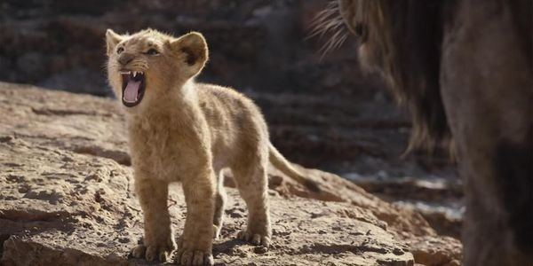 Box Office: Will 'The Lion King' Become Disney's Top-Grossing Live Action Remake?