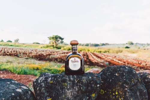 3 Exceptional Barrel-Aged Tequilas to Try Right Now