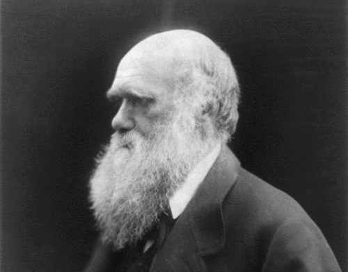 How Charles Darwin Classified His Mineral Collection