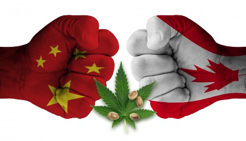China Is Blaming Canada For Its Cannabis Problem But Is Producing 50% Of The World's Supply