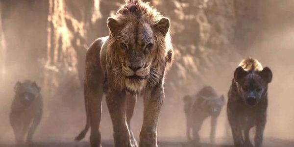 Friday Box Office 'The Lion King' Plunges 71%, Still Tops $800 Million Worldwide