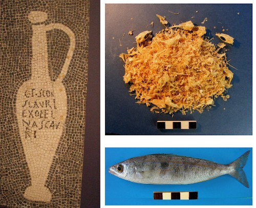 Vat Of Ancient Fish Sauce May Confirm Date That Pompeii Was Destroyed