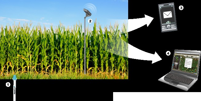 Is Precision Agriculture Finally Taking Root?
