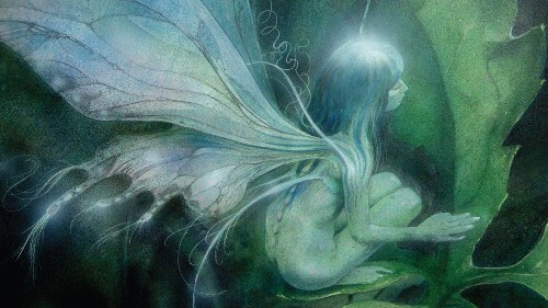 'Brian Froud's World of Faerie' Book Review: A Wonderful Collection Of Fascinating Fantasy Art