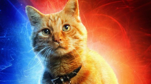 The Most Important 'Captain Marvel' Character Finally Gets A Poster