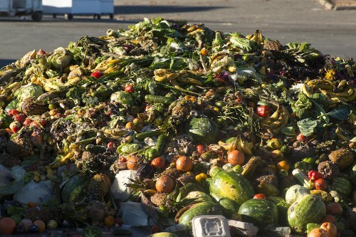 Fertile Opportunity Awaits For Food Waste Processors