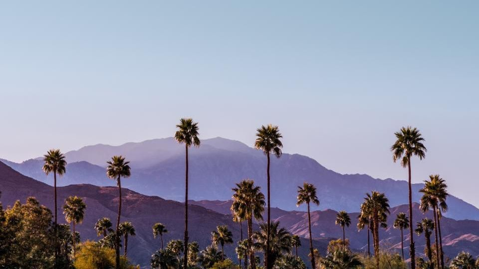 A Weekend Guide To Palm Springs: Where To Eat, And Where To Stay