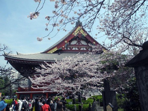 10 Tips For Traveling To Japan From A First-Timer