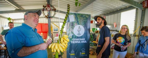 Big Ideas Are Blossoming in Puerto Rico