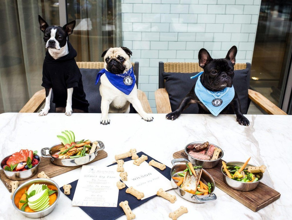New York City Restaurant Adds Special Menu For Dogs