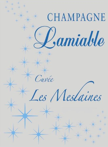 Best Champagne You've Never Heard Of #10, Champaigne Lamiable Les Meslaines 2007