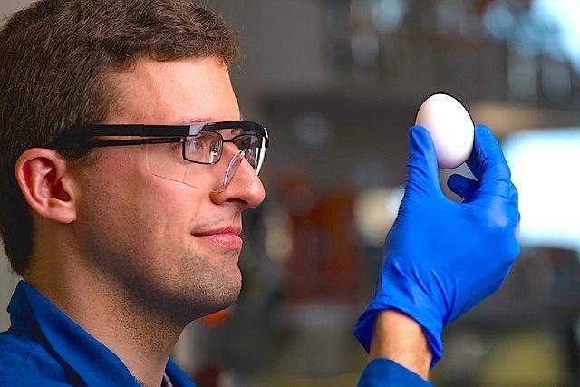 Entropy Defied: Researchers Unboil An Egg