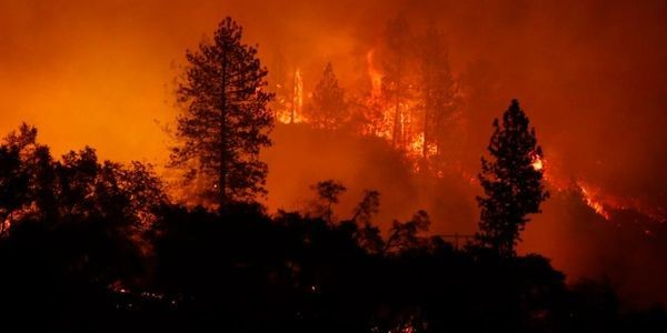 This Data Startup Is Using Machine Learning And Aerial Images To Reduce Risks From Wildfires