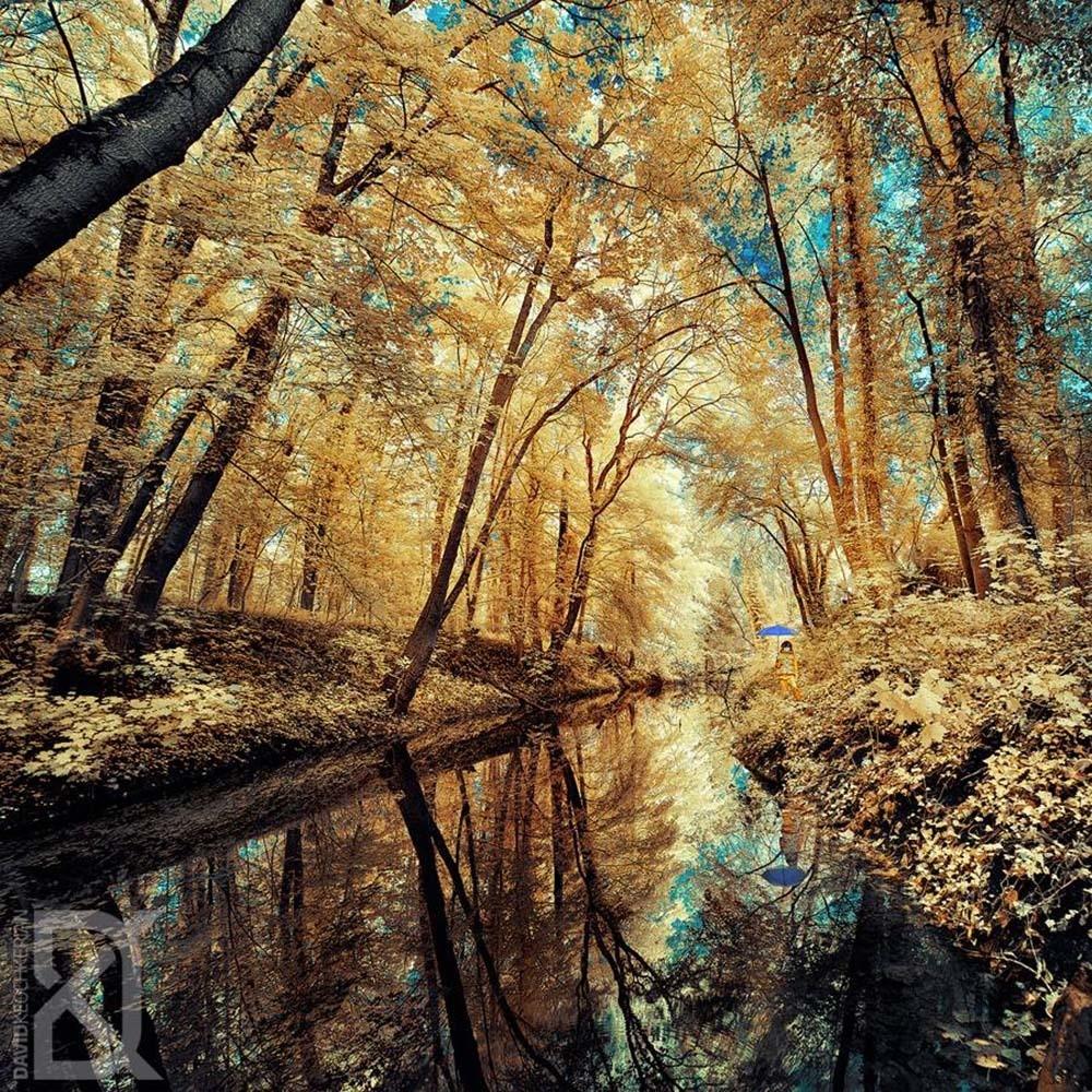 风景 - Magazine cover