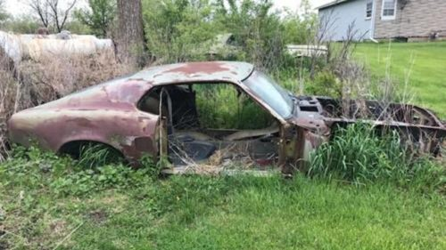 Rotting Ford Mustang on Ebay turns out to be a rare classic