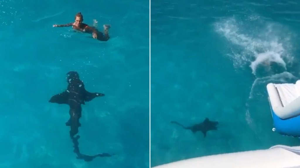 Woman slides into Bahamian waters as 8-foot shark 'bumped' into her