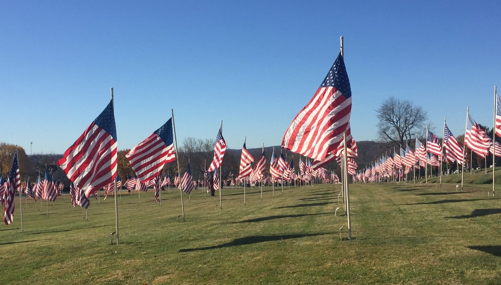 Pennsylvania community honors Veterans Day, fallen heroes with 537 full-sized flags