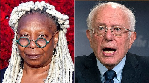 Whoopi Goldberg clashes with Bernie Sanders over reluctance to support Hillary in 2016