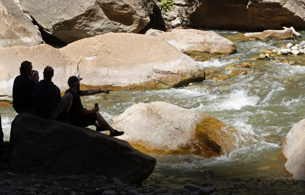 Utah issues warning for Zion National Park river after dog dies of algal bloom exposure after swimming