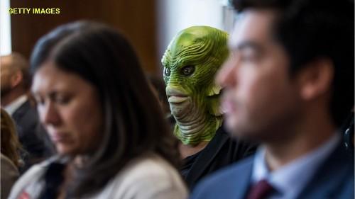 Green 'swamp creatures' crash Trump nominee's Senate confirmation hearing