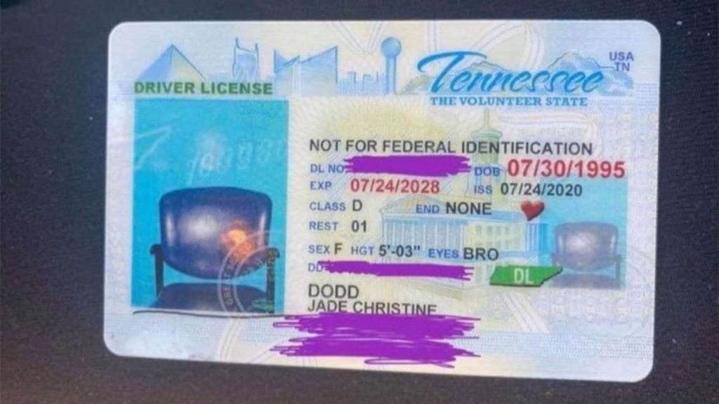Tennessee woman renews license online, but ID arrives with picture of empty chair