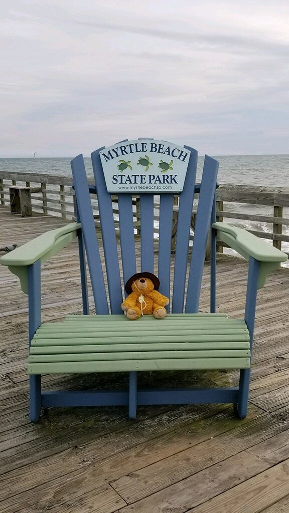 Stuffed bear goes on fun adventure at state park after 5-year-old boy accidentally leaves it behind