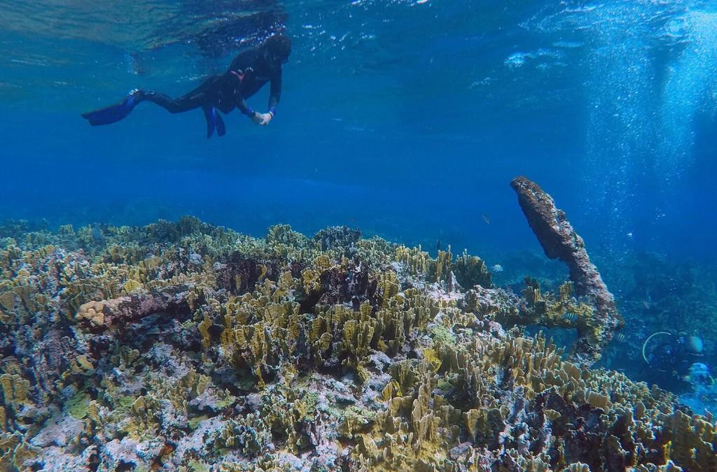 Mysterious 18th-century shipwreck reveals its secrets