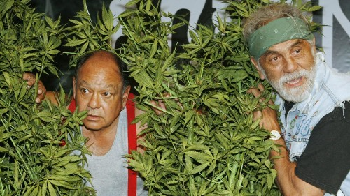 Cheech & Chong reflect on 'Up in Smoke' success: 'The studio had no idea what we were doing'