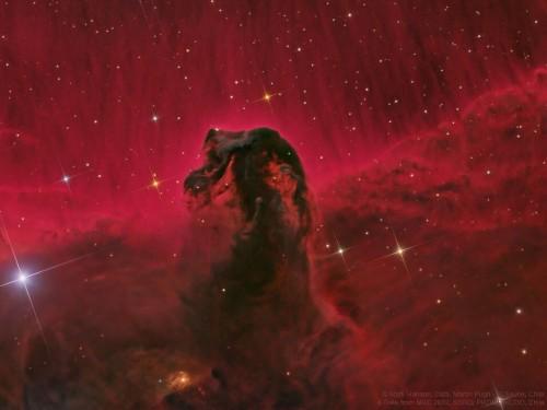 NASA releases stunning image of Horsehead Nebula