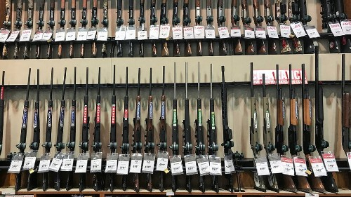 More than 100 Virginia cities, counties declare themselves gun sanctuaries as Dems prepare to take legislature