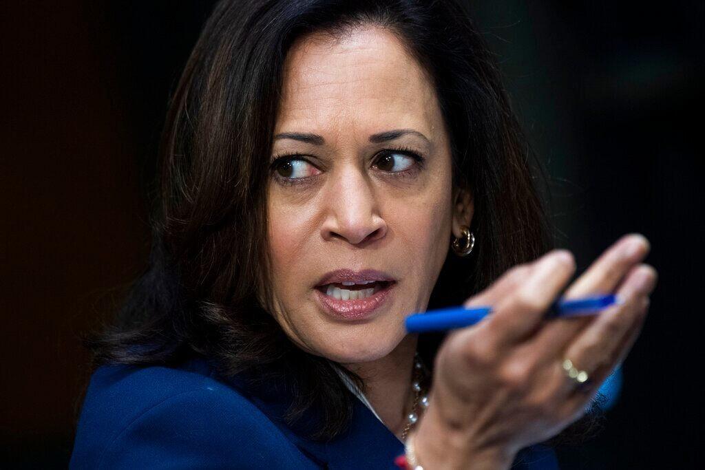 Catholic leader accuses Kamala Harris of being 'ringleader of anti-Catholic bullying' in Democratic Party