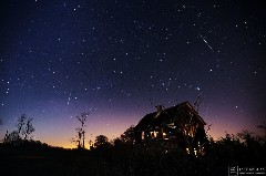 Discover the leonid meteor shower