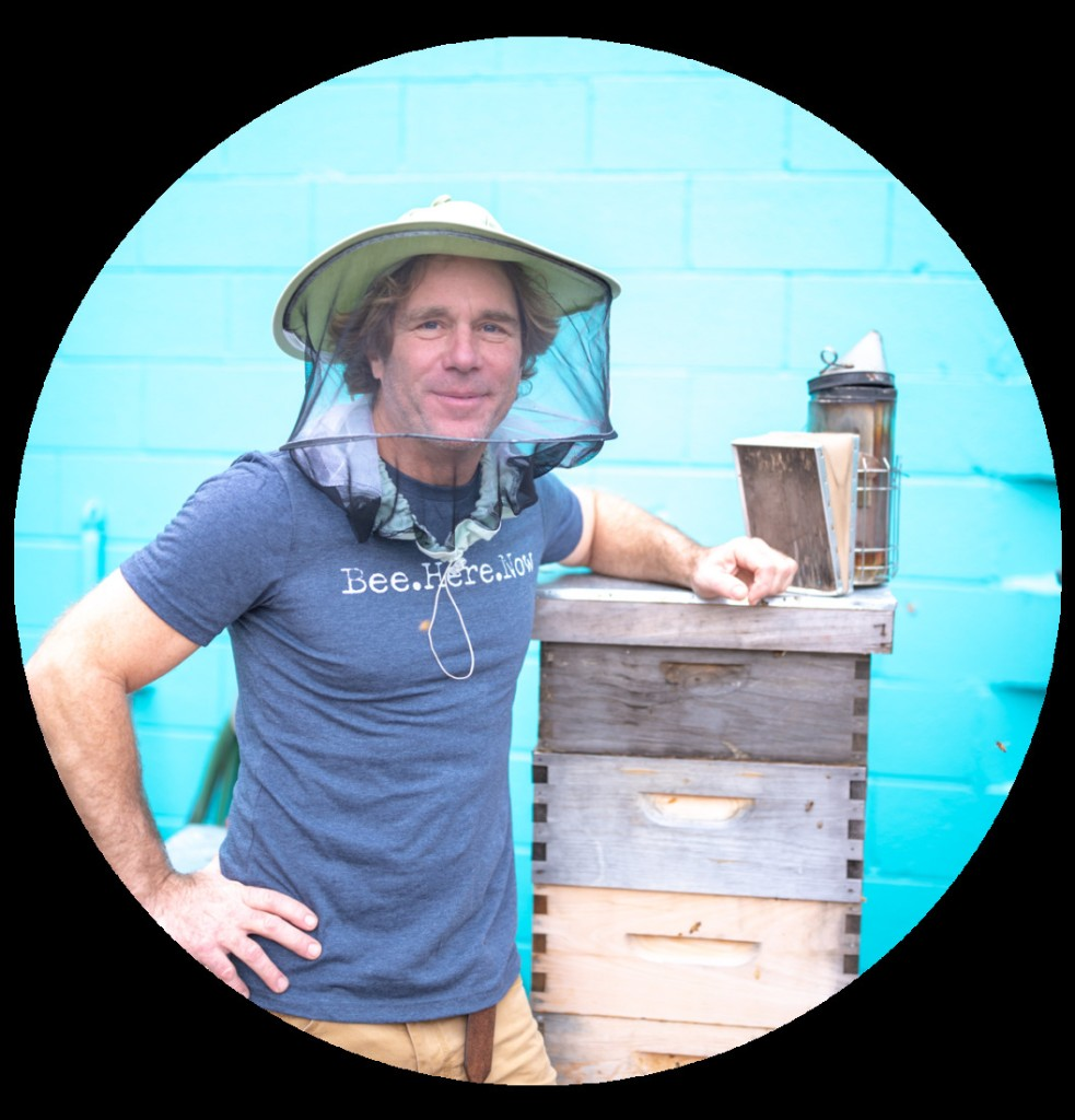 Give Bees a Chance – Garden & Gun