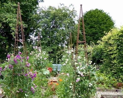Everything You Need to Know About Cottage Gardens