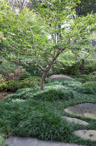 Designer Visit: A Garden Inspired by Japan, in Westchester County, New York
