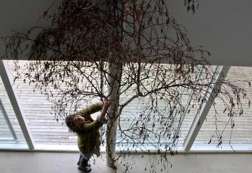 DIY Bird Nests: Twig Tabletop Arrangements for Easter
