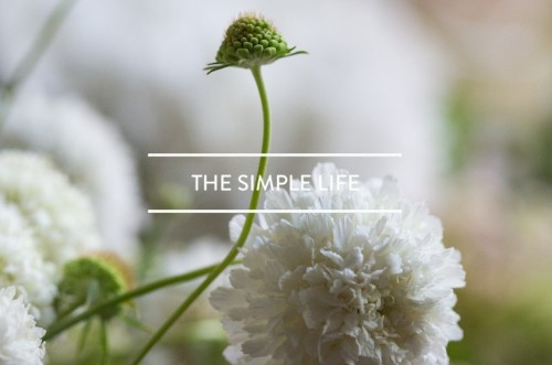 Table of Contents: The Simple Life