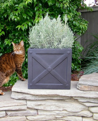 10 Easy Pieces: X Box Planters