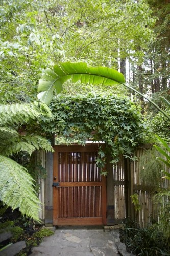 Rehab Diaries: Rescuing a 100-Year-Old Garden