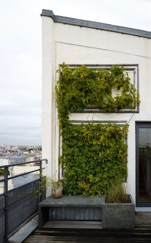 Secret Paris: A Tiny Roof Garden with an Eiffel Tower View