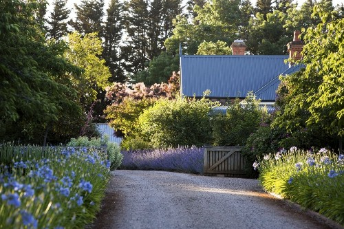 Landscape on a Budget: 10 Quick Fixes to Add Personality to the Average Garden