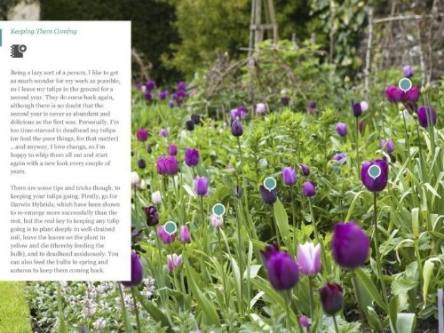Trend Alert: 10 Essential Gardening Apps to Download Now