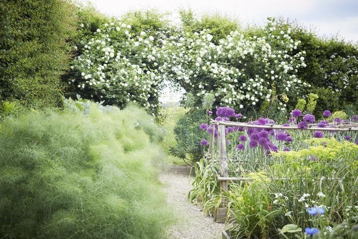 Garden Visit: Sarah Raven's Perch Hill - Gardenista